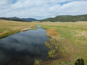 East Fork of Jemez River