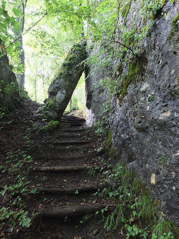 trail climbs