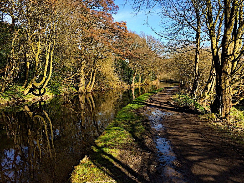 CanalWalk - IMG_3056.jpg