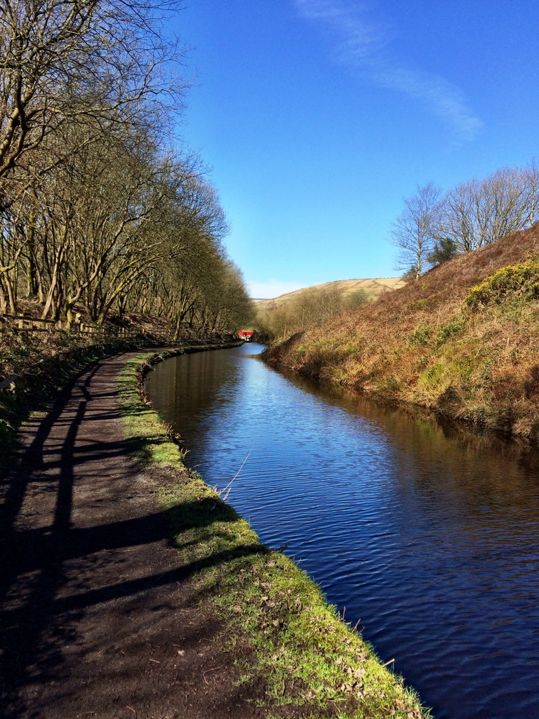 CanalWalk - IMG_3061.jpg