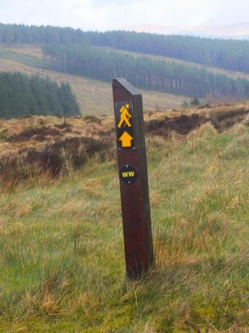 Wicklow Way way marker