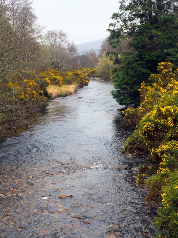 River Avonmore near Larragh