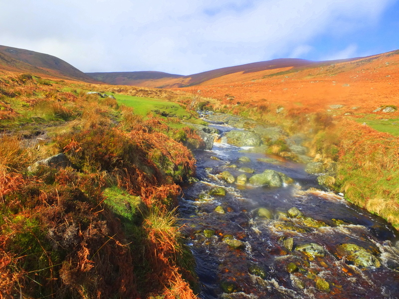 Dargle River in the Glensoulan Valley