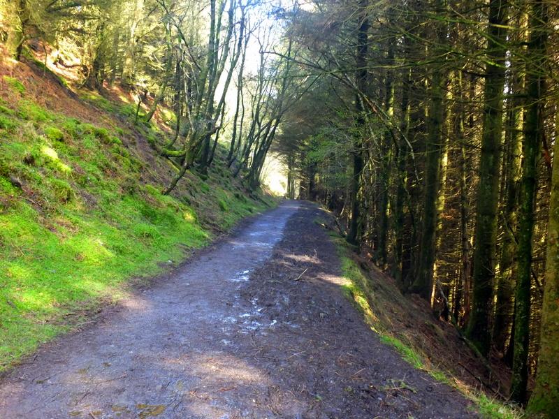 hillside cut
