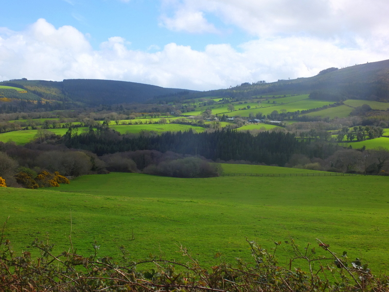 Dargle Valley