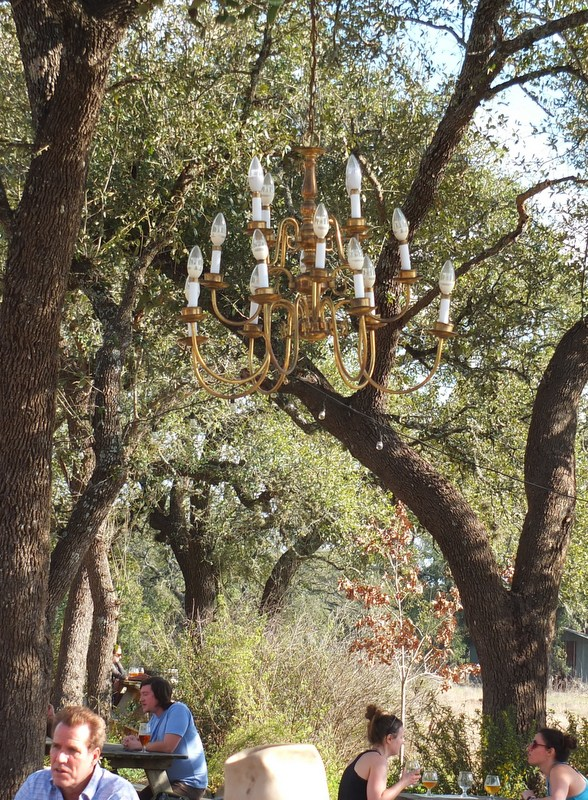 tree hung chandelier