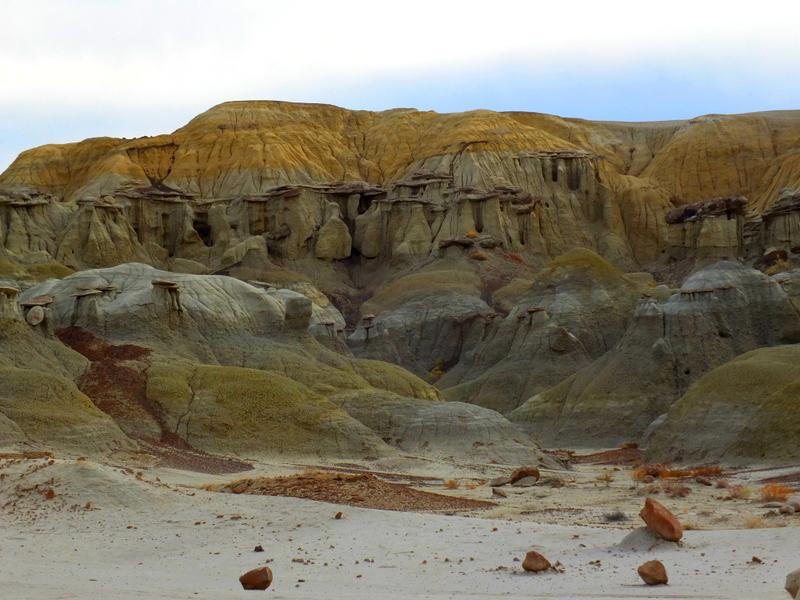 lichen covered hills
