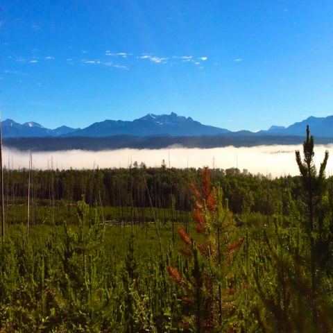 Cloud lying low on the Flathead
