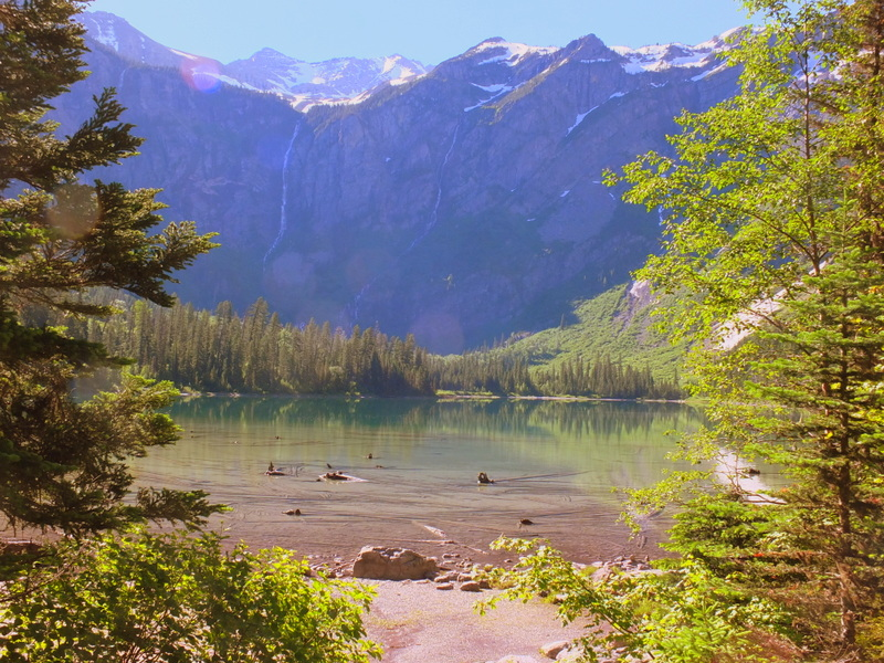 view over Avalanche Lake