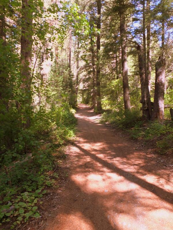 quiet path