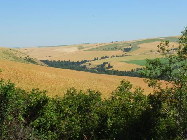 Big view of rolling farmland
