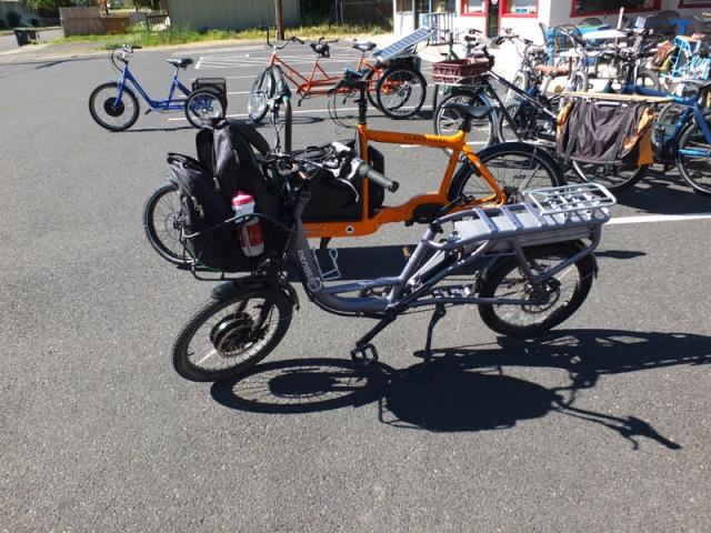 rental e-bike
