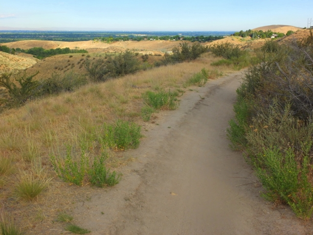 gulch trail