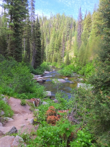 along the Crooked River