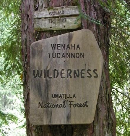 Wilderness marker
