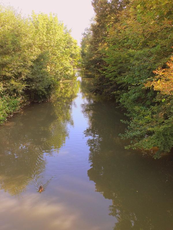 River Ilm
