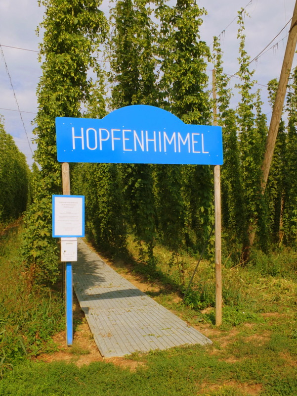 """""""hops heaven"""" - a great little attraction with a high-up viewing platform"""
