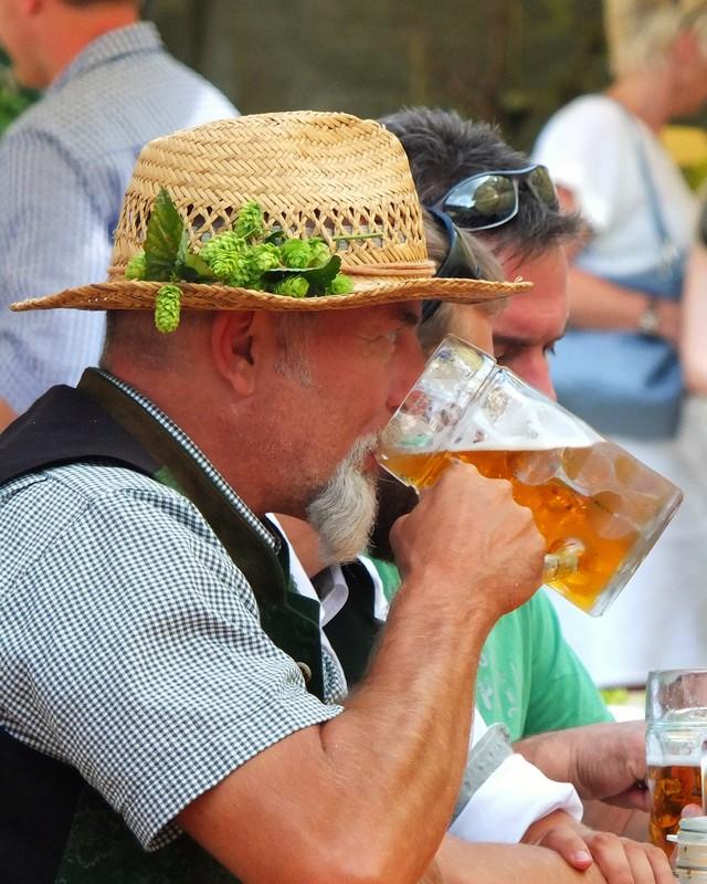 fresh hops adorned hats everywhere