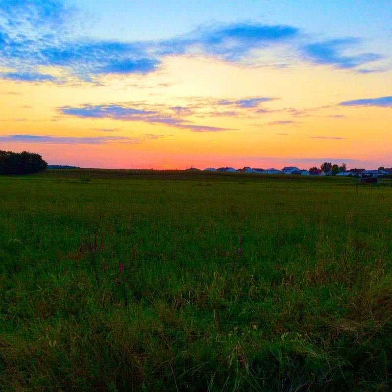 sunset ride through the fields
