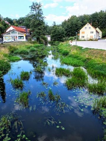 Waldnaab River at Falkenberg