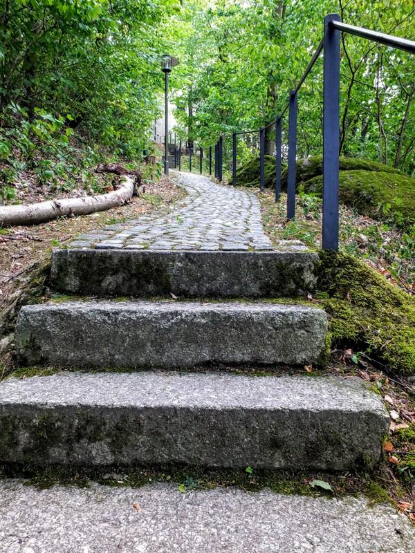 steps to Burg Neuhaus