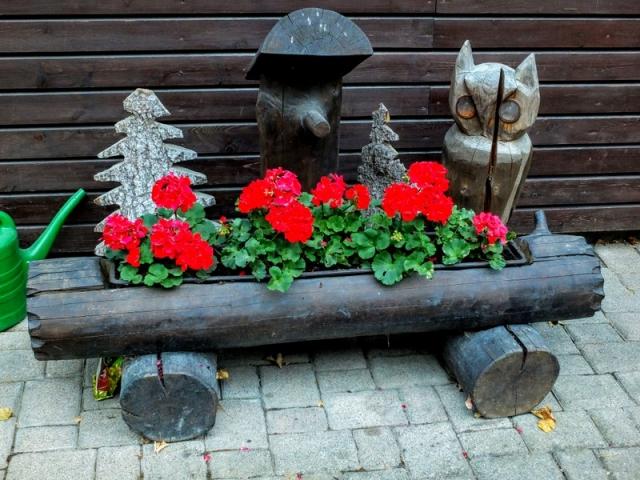 flowers at Die Blockhütte