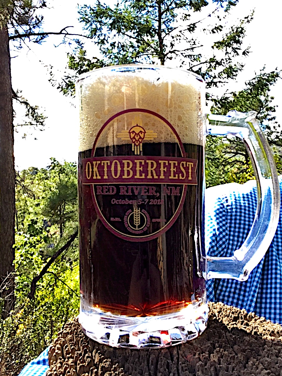 a dark lager at Red River Oktoberfest
