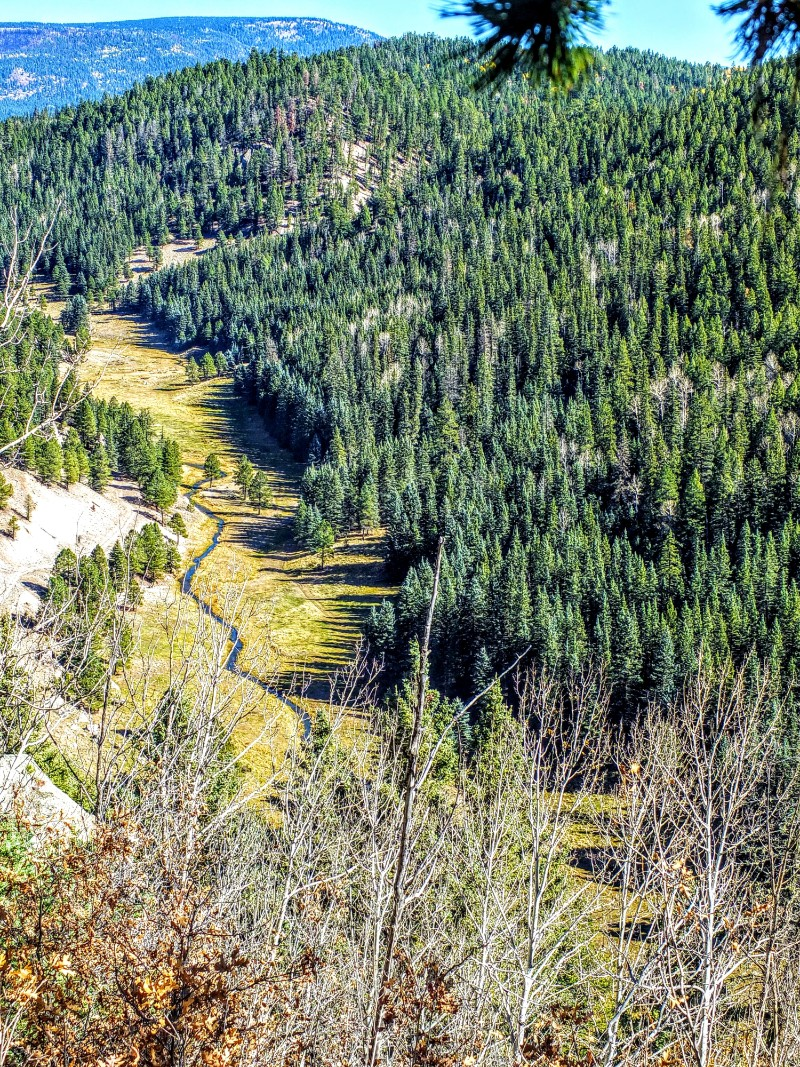 San Antonio Canyon viewed from the rim above