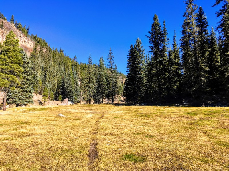 trail through meadow