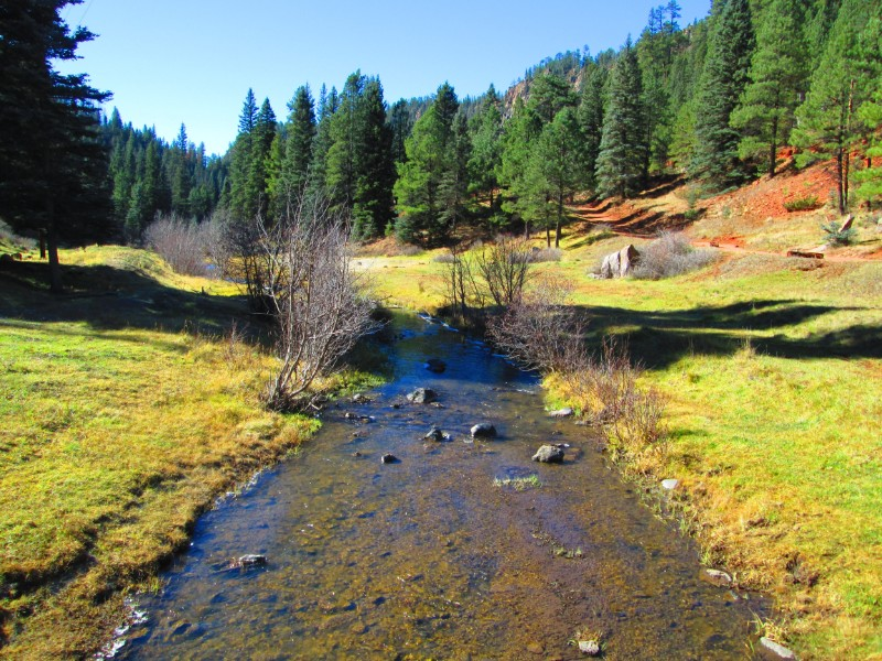 along the creek