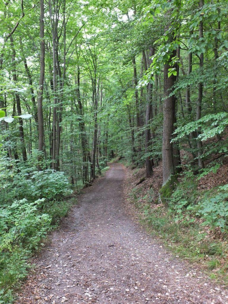 Hiking the countryside near Eschwege