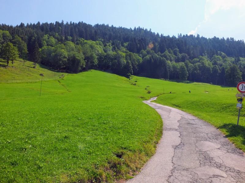 mountain pathway