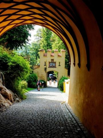 at Schloss Hohenschwangau
