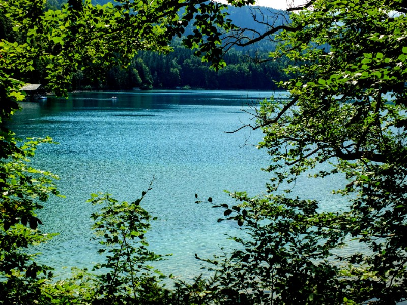 along the Alpsee