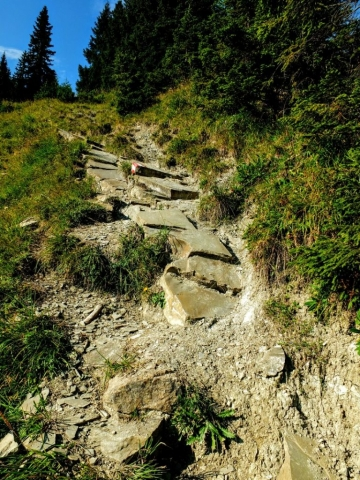 sketchy trail section