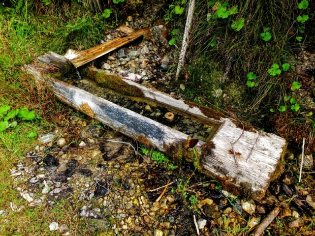spring trough