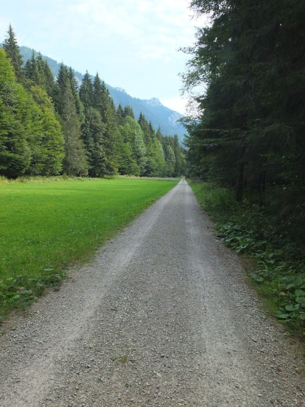 mountain valley pathway
