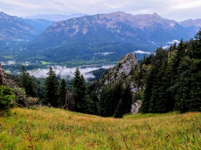 steep meadow