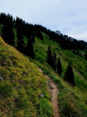 trail cuts steep slope