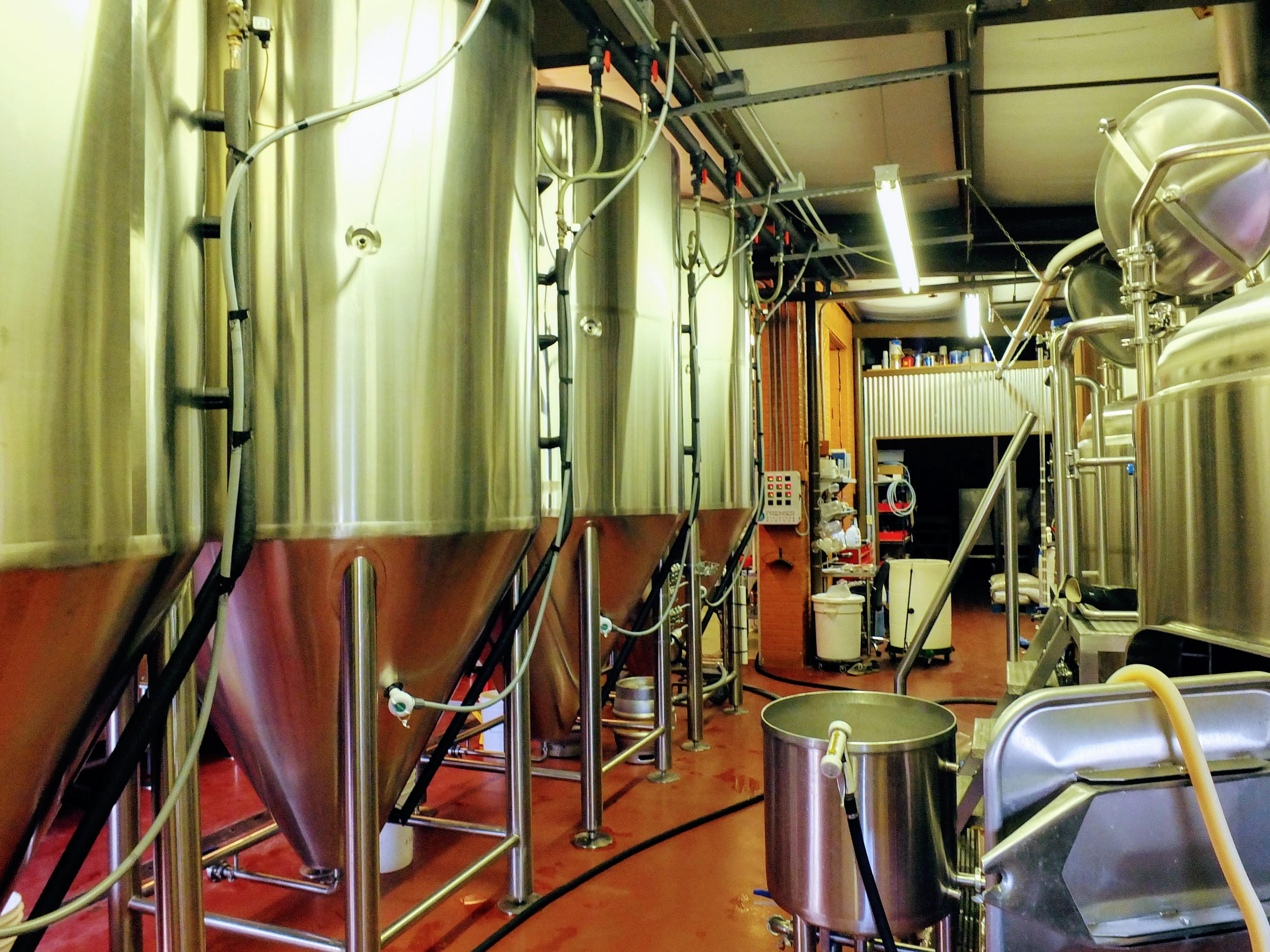 St. Boniface brew kit