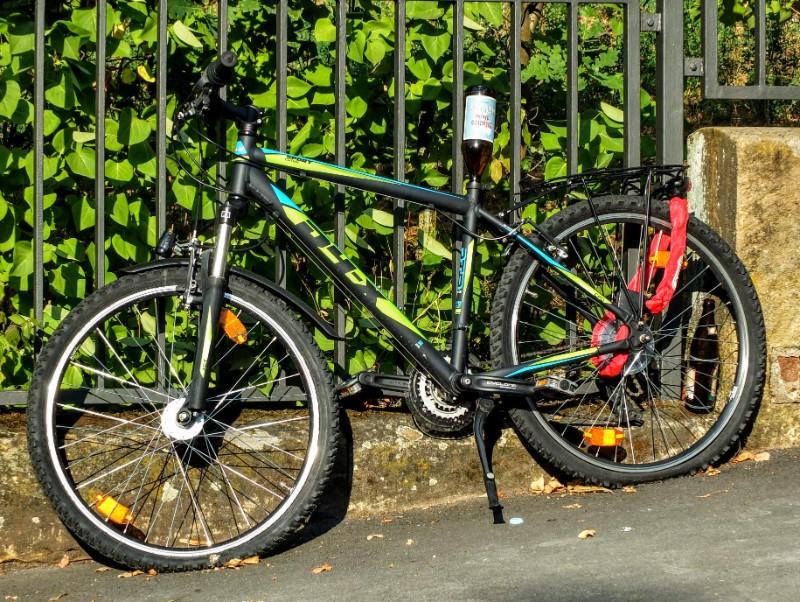 beery bike seat