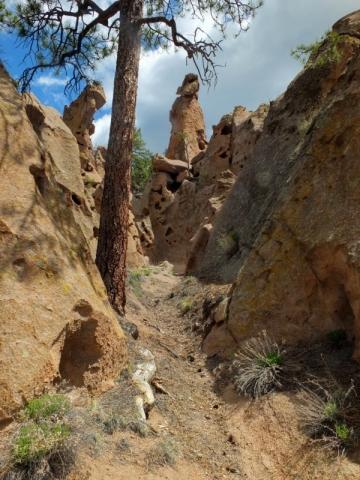trail slot