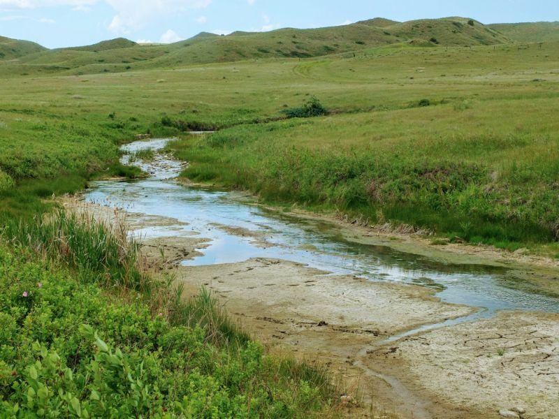 stream from Sulphur Spring