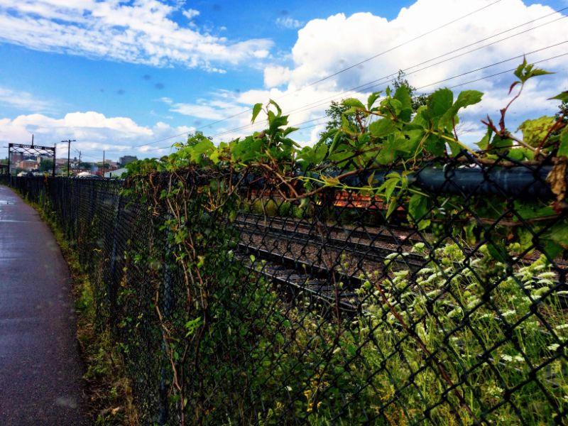along the tracks south of downtown