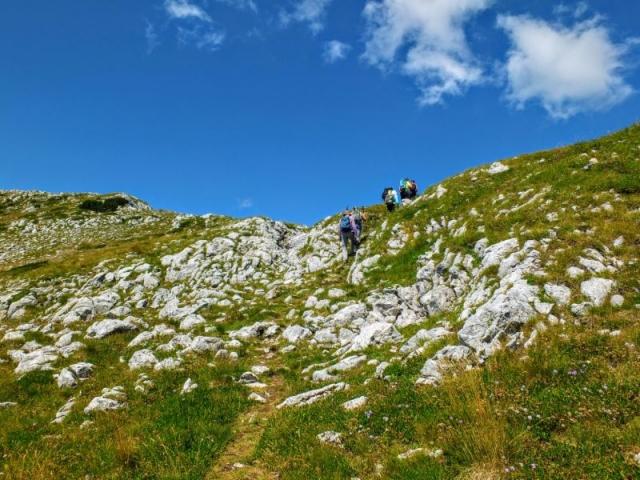 up to the ridge