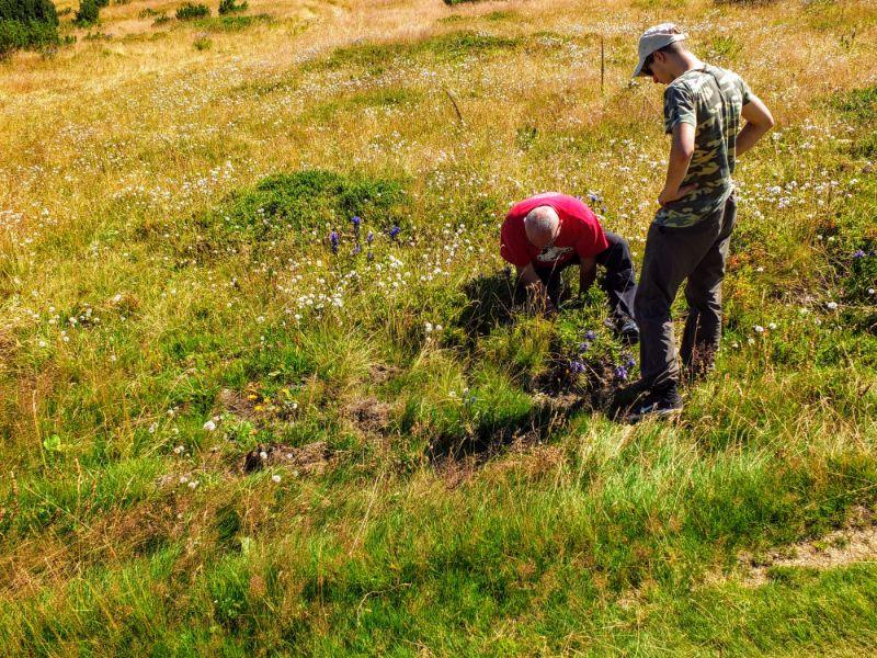 Feka and Arif gathering medicinal roots