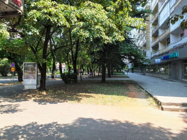central Podgorica
