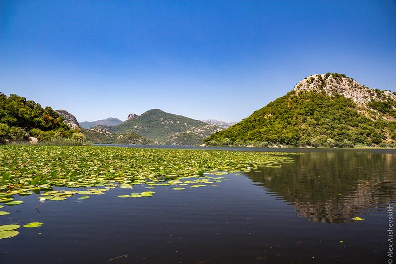 Skadar Lake (image by Alex Alishevskich)