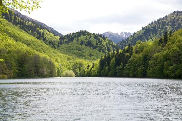 Biogradska Jezero