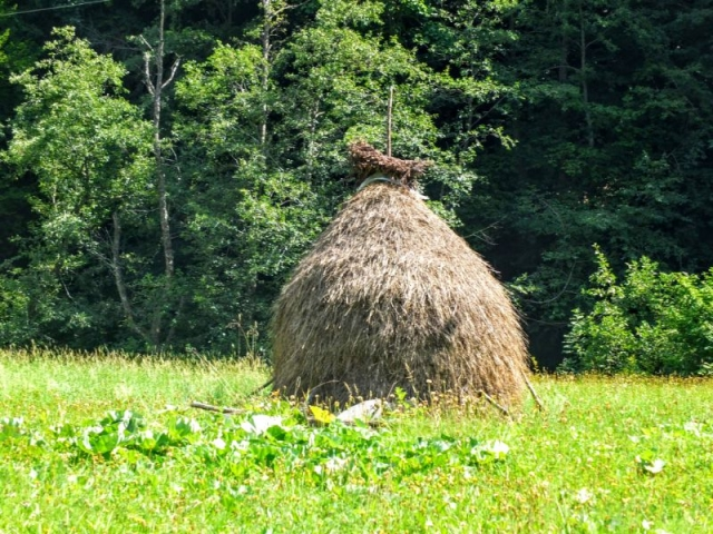 traditional hay stack